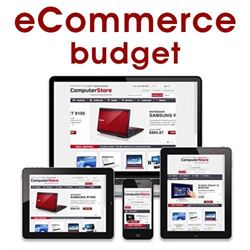 eCommerce Website - Budget